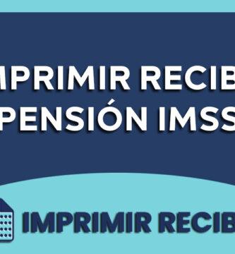recibo pension imss
